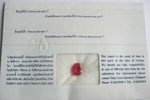 Example of local certificate in Bangkok.  Tokyo Lab Certificate Sample Back